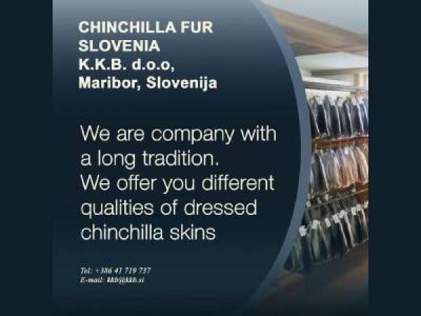 CHINCHILLA DRESSED SKINS